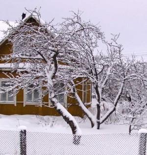 podgotovka-sada-k-zime