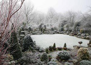 zimoj-v-sadu-vovse-ne-skuchno